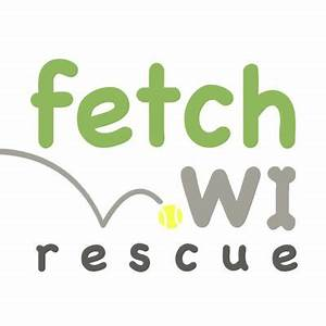 Paws on the Patio with Fetch Wisconsin